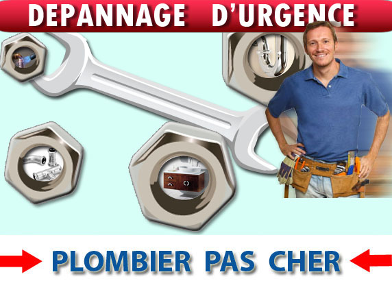 Evacuation Bouchée Flins sur Seine 78410
